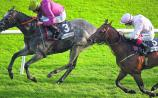 THE PUNTER'S EYE: Galway Races Tips - Day 2