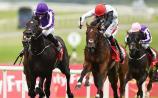 Betting: Cracksman to prevail again - Colm Kinsella