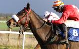 Limerick trainer Austin Leahy wins on local track