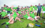 Opinion: Time for the Limerick junior hurling A to move all-county - Jerome O'Connell