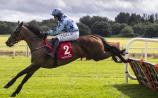 Bumper successes for Limerick racing enthusiasts