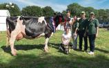 Charleville Show champion: Donal, Kathleen, Thomas, Ann and  Caitriona Neville, Croagh with Milliedale Dusk Rhapsody (EX94)