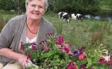 Gardening: My time to hang up the trowel
