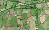 Close to 50 acres of prime County Limerick land for sale near Adare