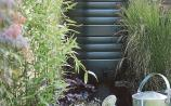 Green Fingers: Water conservation: Waste not, want not