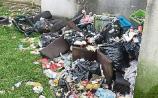 Fury over rubbish dumpingin Limerick town close to children's playground
