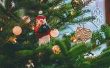 Gardai urge Limerick homeowners to leave fake presents under tree