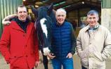Limerick farm gets spotlight feature on RTE documentary