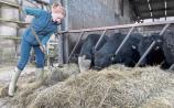 Limerick's Méabh answers farming's 'call'