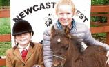 Tradition meets family fun at Newcastle West Agricultural Show