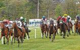 THE PUNTER'S EYE: Four horses worth a bet this weekend
