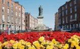 Limerick city in bloom with colourful floral displays
