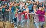 Foynes to stage bumper weekend of celebrations in 2017