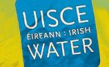Irish Water prosecuted over delay in upgrading water treatment plant in Limerick village