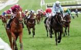 Punchestown Betting: Star novice Samcro can step up to Champion Hurdle tilt