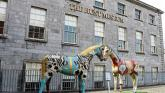 Funding boost for events and exhibitions at Limerick museums