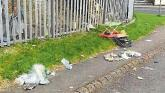 Women prosecuted and fined over dumping incidents in Limerick