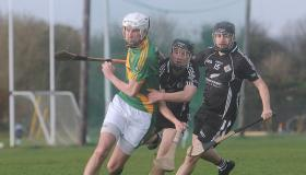 Knockainey claim Limerick County Cup title following Ahane win