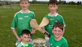 SLIDESHOW: All-Ireland title win the catalyst for new Limerick hurling club