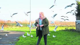 WATCH: For the birds! Limerick pensioner in a flutter over fine for feeding feathered friends