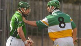 SLIDESHOW: On This Day 2007 - Limerick defeat Offaly to avoid hurling relegation