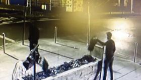 WATCH: Limerick pub releases CCTV of man causing damage to flower bed
