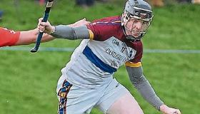 UL power into Fitzgibbon Cup final against DCU