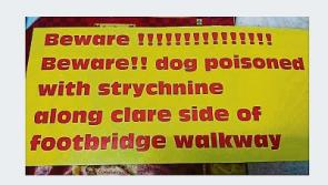 Limerick owners of poisoned terrier erect warning signs