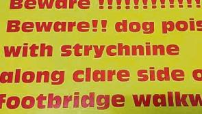 Limerick dog owners warned to keep pets tied after new poisoning case