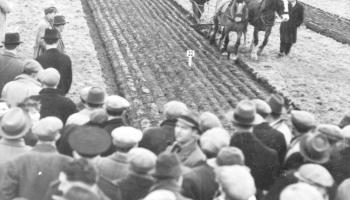 SLIDESHOW: The National Ploughing Championships were very different in the good old days