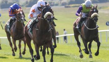 Winners alright for Limerick horse racing connections