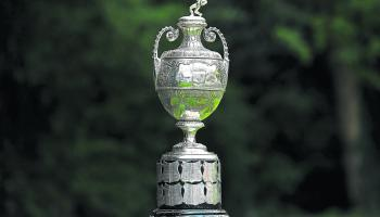Three Limerick rugby sides to feature in last season's Munster Senior Cup