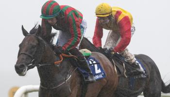 It's winners alright for Limerick racing enthusiasts