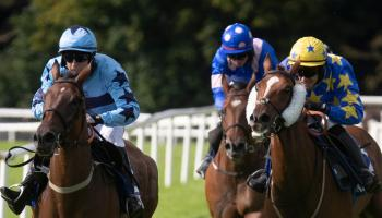It's winners alright for Limerick racing connections