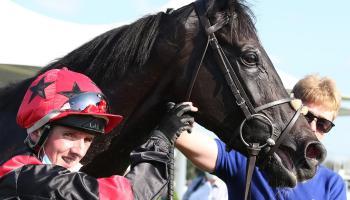 Limerick jockeys in rich vein of form on the track