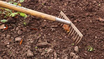 €50,000 in government funding to develop community garden in Limerick village