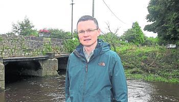 Limerick minister dismisses polygraph request over alleged Cabinet leak 'sting'