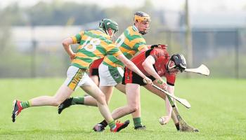 Promotion and relegation to be finalised in Limerick senior club championships