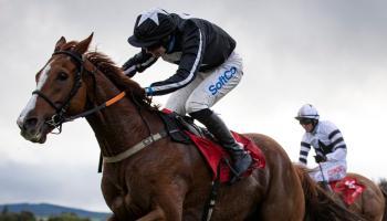 Big Limerick success at Cork among highlights for racing enthusiasts