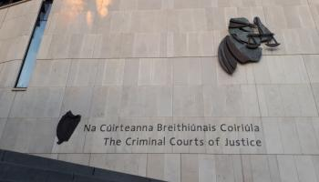 DPP appeals 'unduly lenient' sentence imposed over fatal road collision in Tipperary