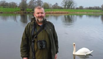 Limerick councillors clash over proposal to appoint a biodiversity officer