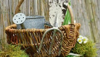 Green Fingers: Getting the right tool for the right jobs