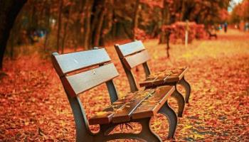 Healthy Living: Change of seasons – prepare your family