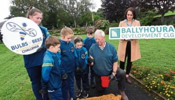 Light-bulb moment: Pollination project launched in Limerick village