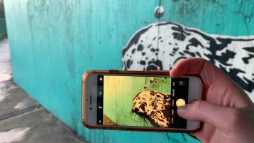 ary Conroy's beloved otter mural under Shannon Bridge
