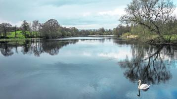 Step forward for planned Limerick greenway