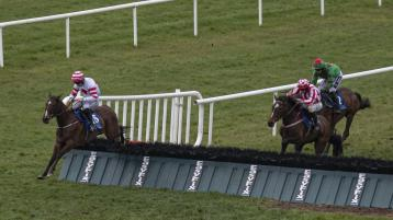 Bumper spell of success for Limerick racing connections