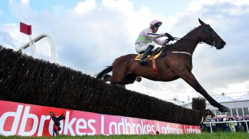 PUNCHESTOWN TIPS: The best bets for Day 1 of Punchestown
