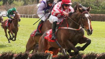 Winners flow for Limerick jockeys on the track