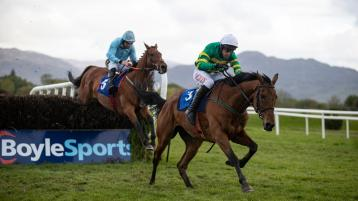 Bumper spell for Limerick racing connections